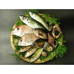 瀬戸内海の天然魚介類セット(1~3人分) 送料込み