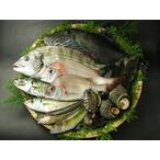 瀬戸内海の天然魚介類セット(3~5人分)