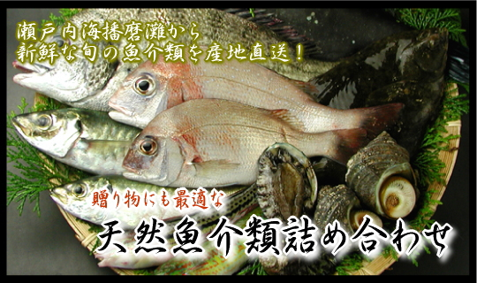 瀬戸内海播磨灘の魚介類詰め合わせ